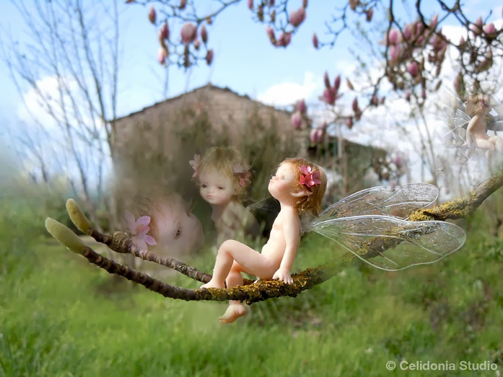 Fairy on Magnolia Branch