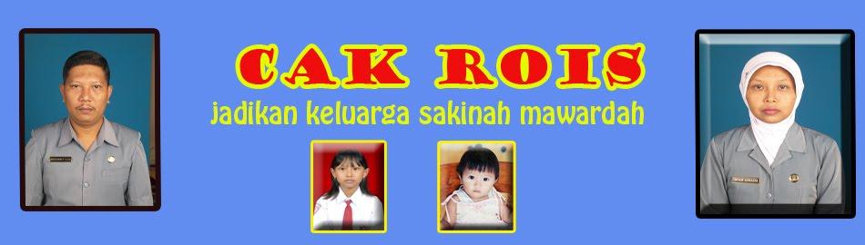 CAK ROIS