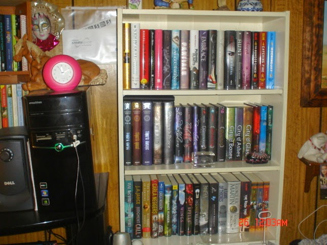 One of Many Bookshelves
