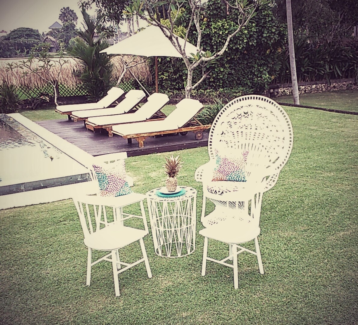 mexican low topm white nordic and peacock chairs