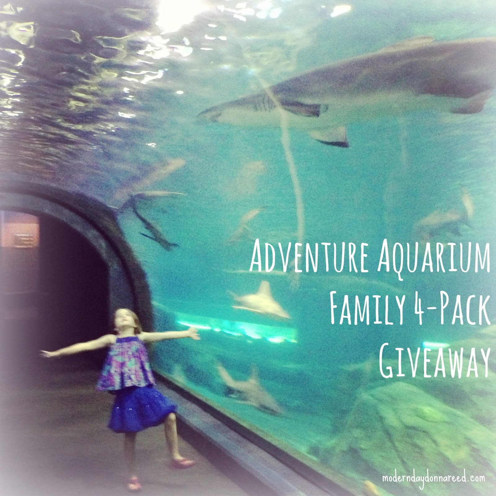 Adventure Aquarium Giveaway Family 4 Pack Of Tickets