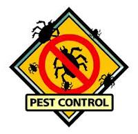 Oraganic Pest Control in San Antonio