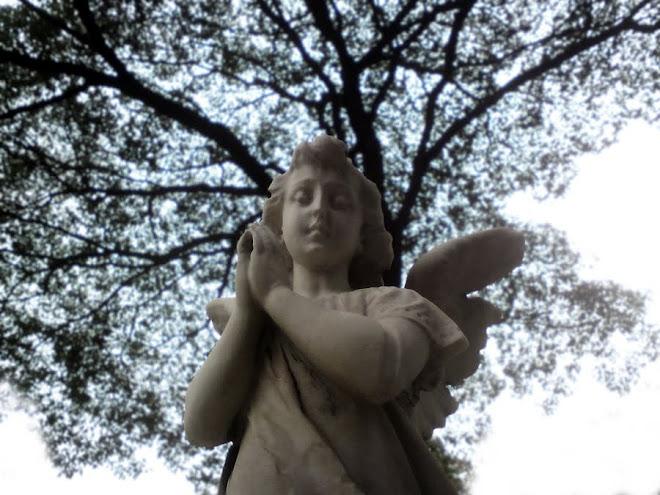 Angel rests in the Consolation Cemetery, São Paulo/Brazil. Anjo descansa no Cemitério da Consolação