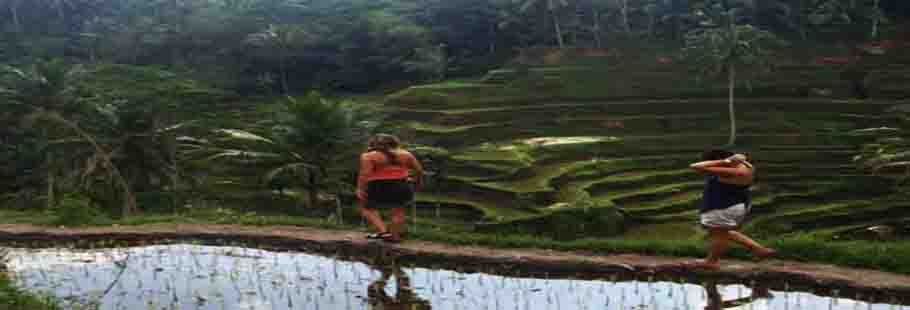 Rice Terrace Trekking