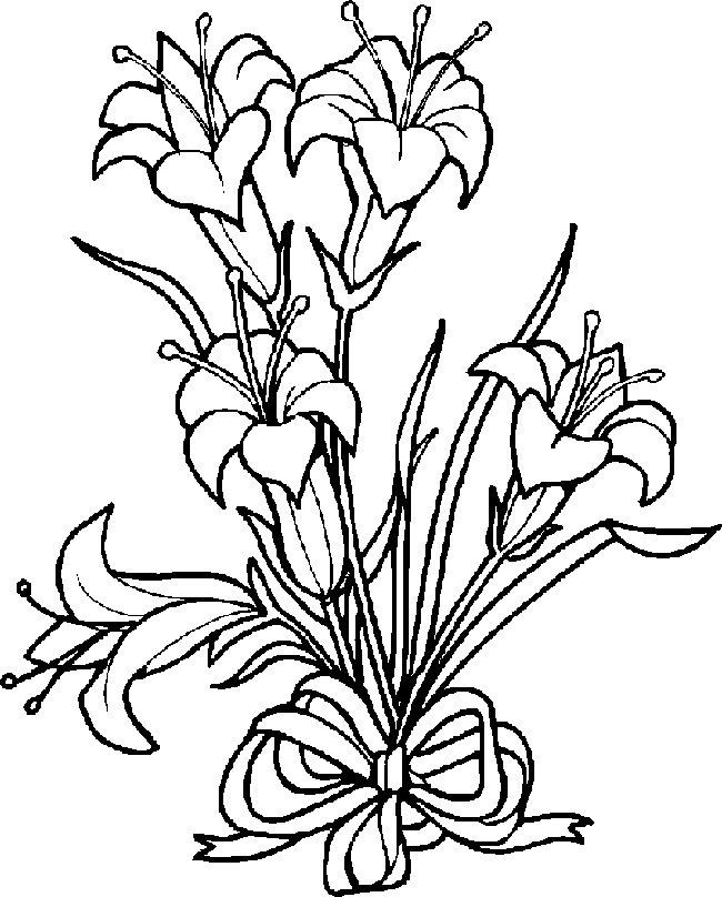 Desenhos Para Colorir Lindos Beija-Flor em lindas Flores