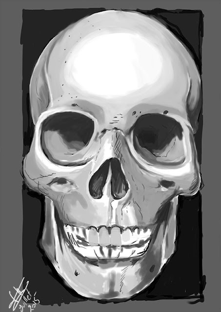 picture of a skull, digital painting by serely artworks