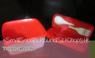 Tupperware Murah Red Square Chopstik