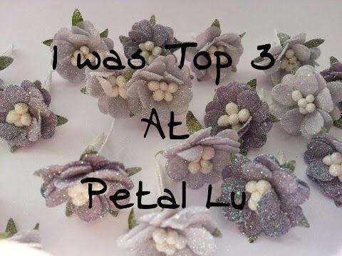 Petal Lu Top 3 Pick