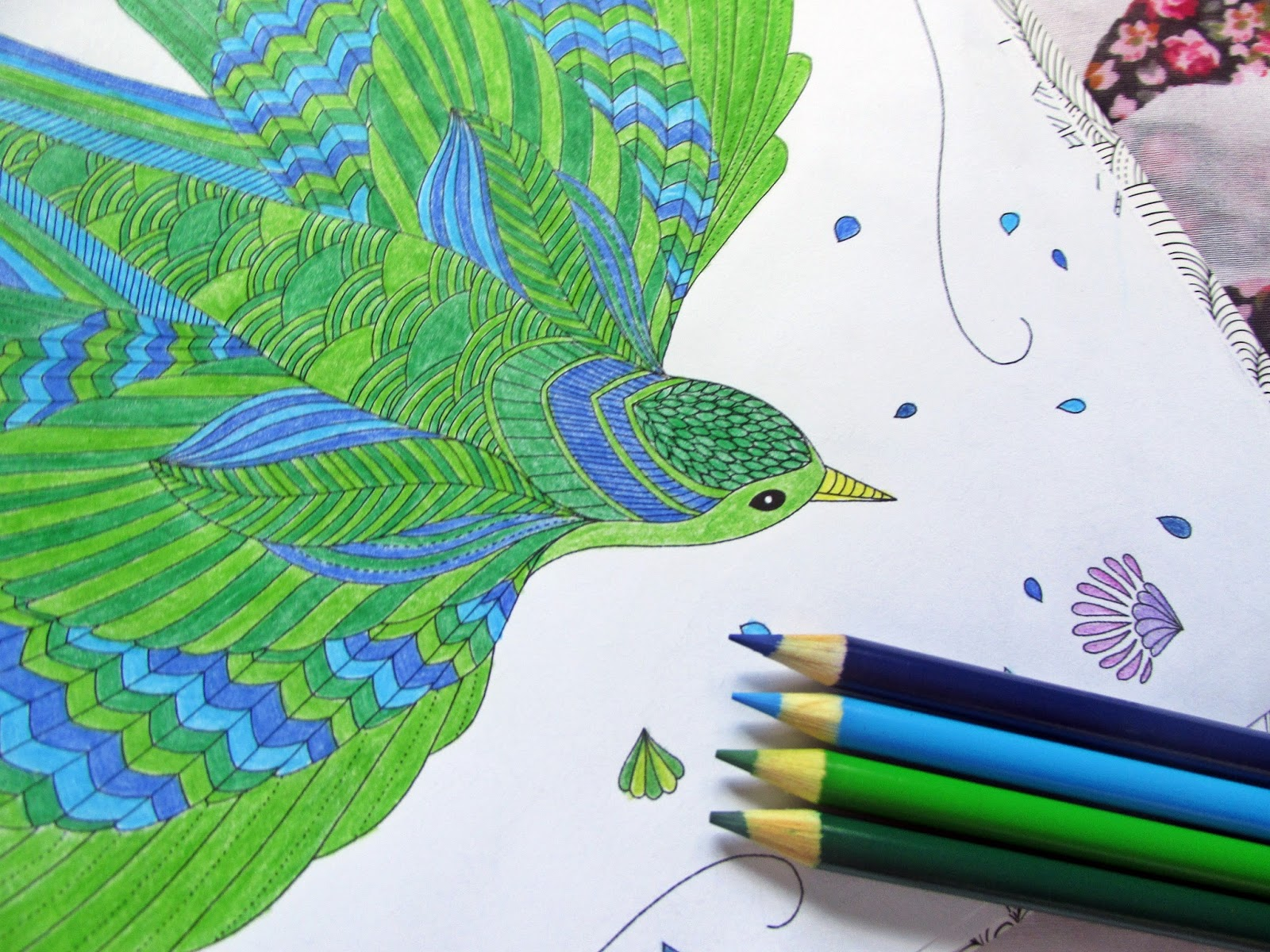 Color me draw me animal kingdom book - It S The Perfect Book If You Want To Create Pretty Pictures But Don T Have A Talent For Drawing That S Me Alright