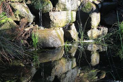 Billabong Olinda