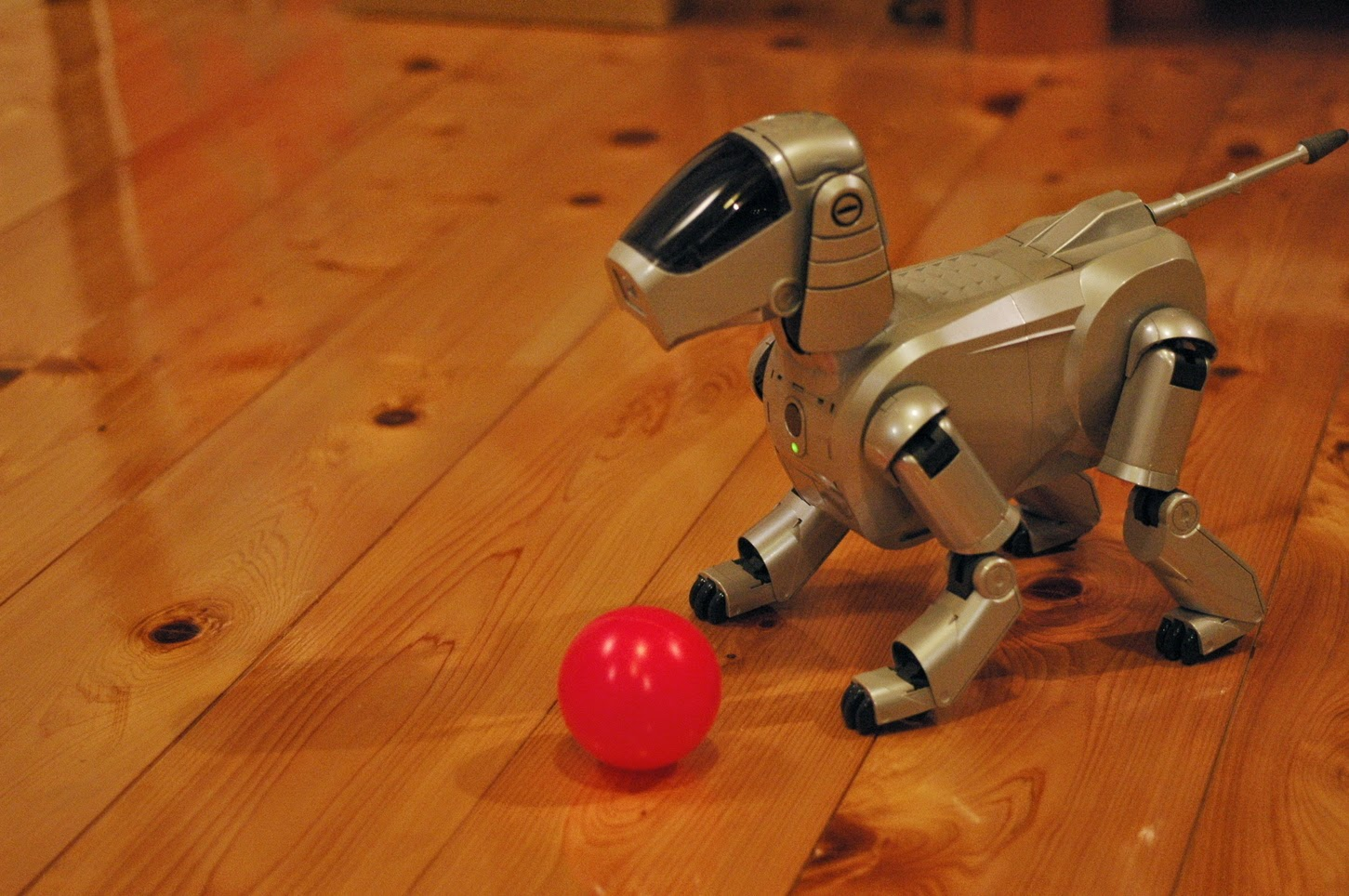 Aibo future dog robot