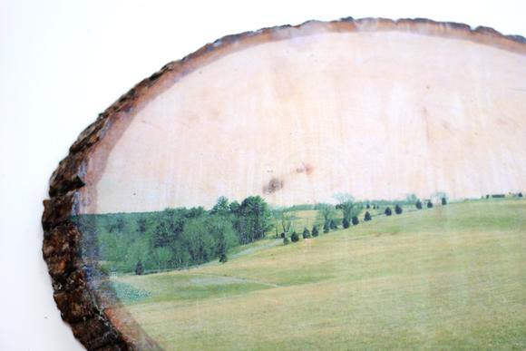 شكل اللوحة بعد إزالة السطح الورقي
