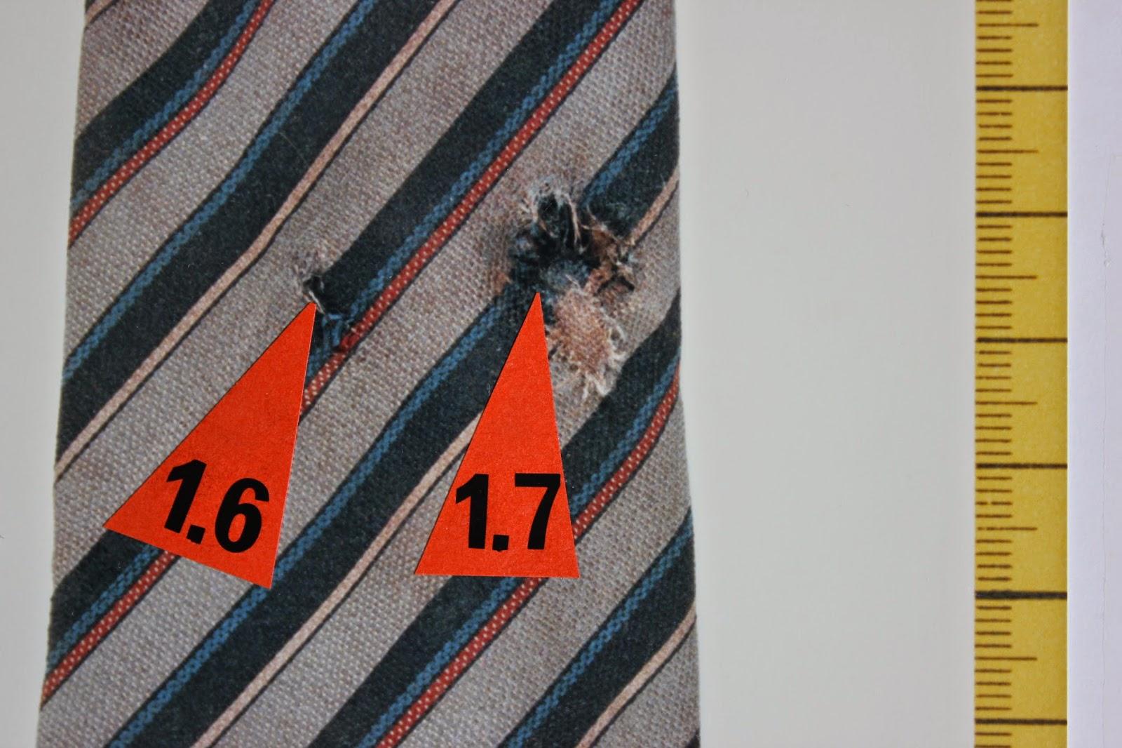 Olof Palmes slips 5