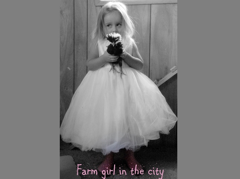 Farm Girl in the City