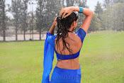 Neelam Upadhyay pics in Blue saree-thumbnail-10