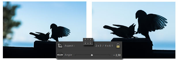 Lightroom - recadrage