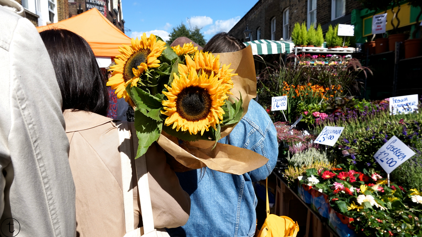 sunflowers at columbia road flower market in london