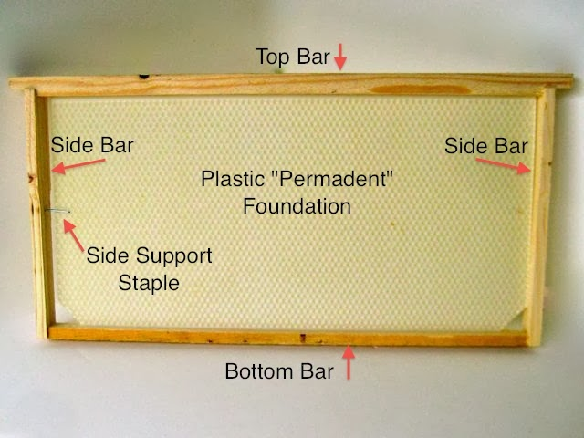 The Honey Company: Back to basics: Frames and Foundaiton