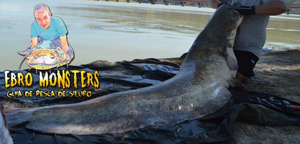 Guia de pesca de siluro Adri Ibars