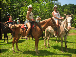 Horse backridding Tour