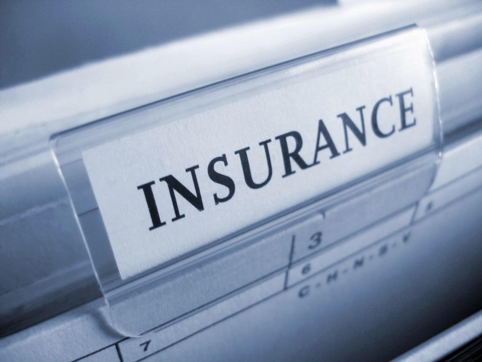 Insurance, Profit Companies, The Principle Basic, Denial ...