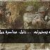 نابل: محاصرة جبل غرادية… و توجيه تحذيرات للأهالي