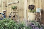 herb garden redo