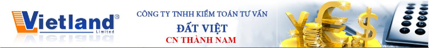 Công ty Kiểm toán và Tư vấn Đất Việt - Chi nhánh Thành Nam