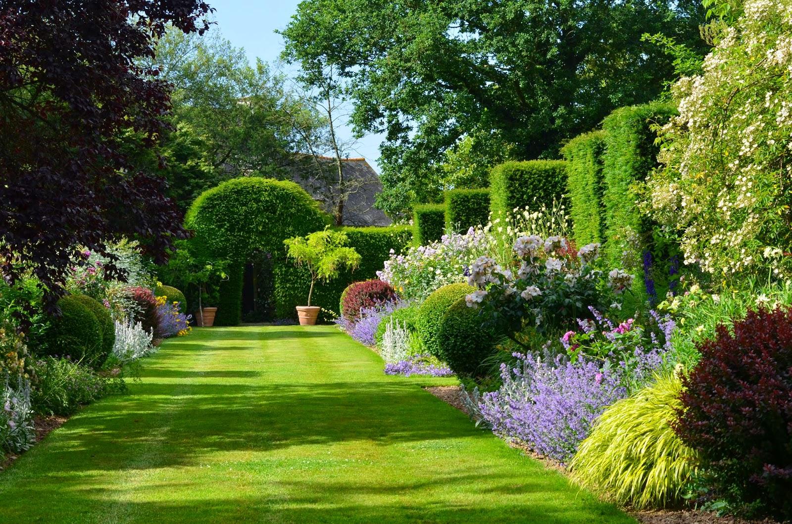 Citrouilles et lutin la nouvelle bordure for Plantes pour bordures de jardin