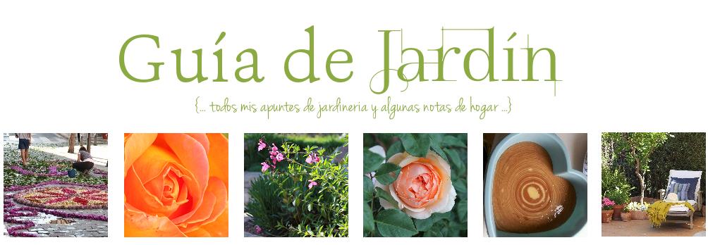 Guia de jardin reproducir plantas suculentas for Guia de plantas de jardin