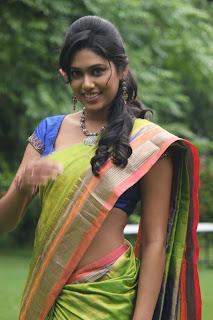 Actress Manisha Yadav  saree stills 016.jpg