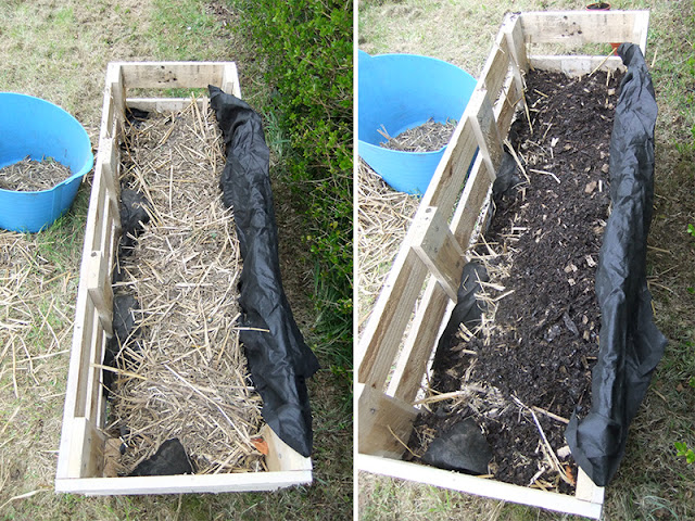 Grow strawberries in small spaces with this project tutorial on how to build and plant up a better Strawberry planter using a single wooden pallet #gardening