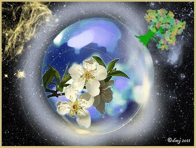 mondo fiorito