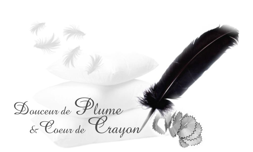 Douceur de plume et coeur de crayon douceur de plume coeur de crayon - Laver un oreiller en plume ...