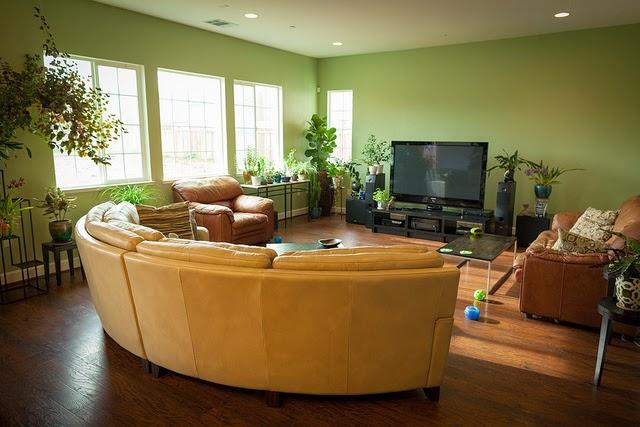 contoh desain interior bernuansa hijau