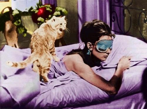 uk fashion blog, audrey hepburn, diy, sleeping mask, cat, iconic