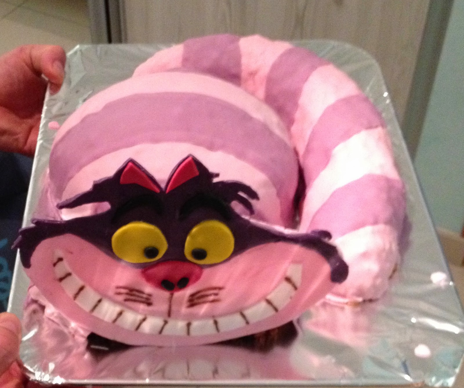 cheshire chat Find great deals on ebay for cheshire cat plush in disney plush toys shop with confidence.