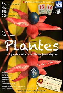 foire aux Plantes originales et collections botaniques les 13 et 14 octobre 2012