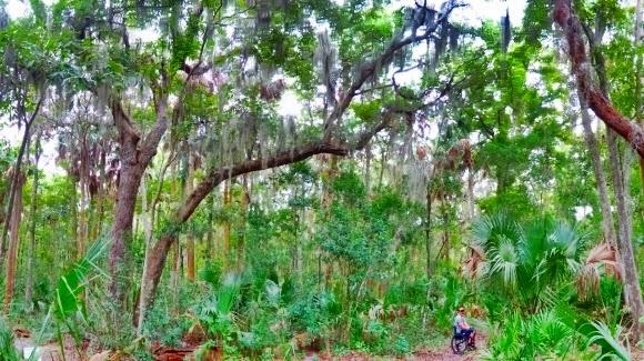 Kathryn Abbey Hanna Park, Jacksonville, Florida USA