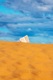 Dune reader