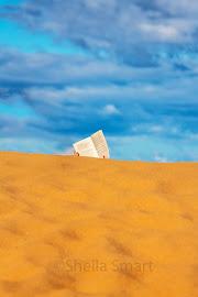 Dune reader