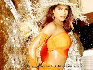 Priyanka Chopra 2015 Hot Wallpapers 2014 Hot Priyanka Chopra Photo Bikini www.hotsite4.blogspot.com Priyanka Chopra Full Sexy Desktop Wallpapers