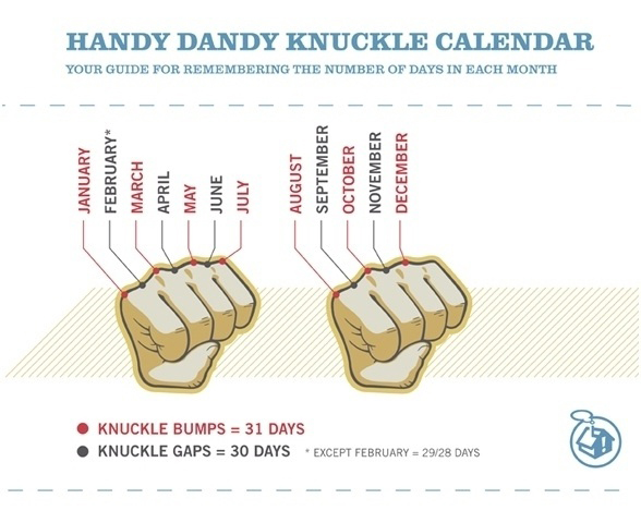 Your Guide For Remembering The Number Of Days In Each Month - Knuckle Calendar