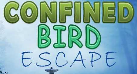 FirstEscapeGames Confined Bird Escape