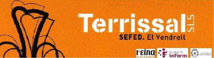 TERRISSAL S.L.S.