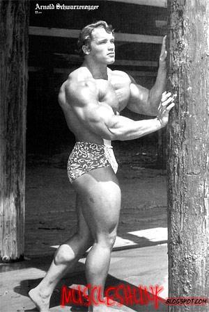 Arnold schwarzenegger the legend of bodybuilding bodybuilding and