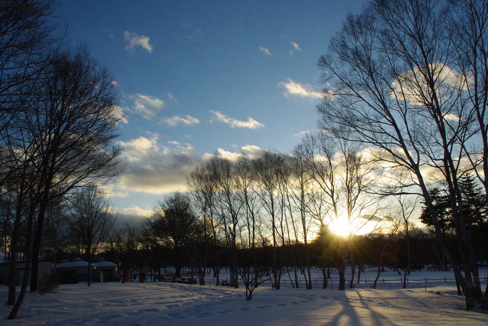 美しい夕日に映える近所の公園