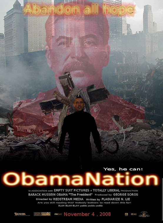 Obamanation