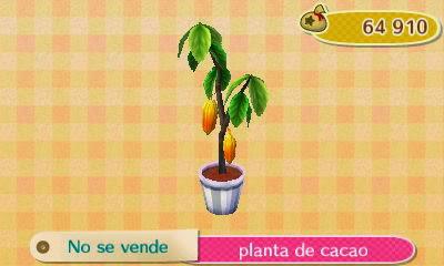 Dia de San Valentín: Planta+de+cacao