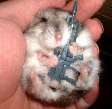 Animals With Guns